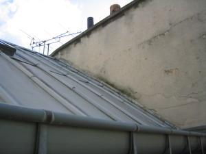 toit et souches Est sur cour